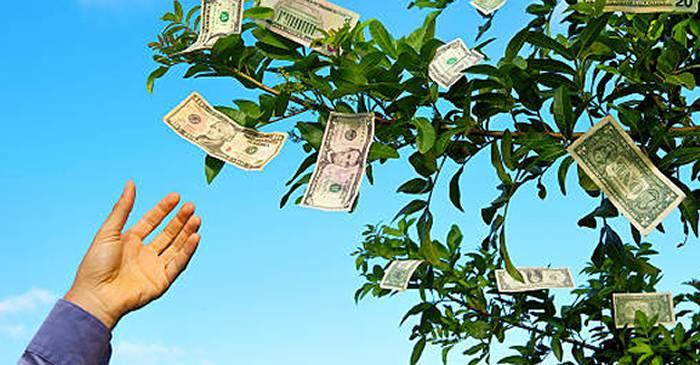 cum să faci bani sau să nu faci nimic