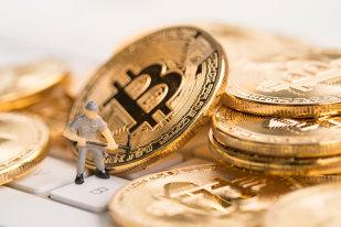 cum să crească bitcoins