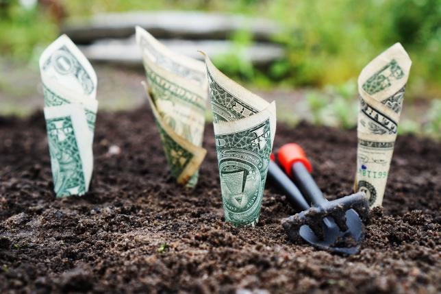 cum să investești în Internet și să câștigi